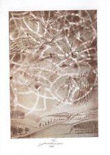 Birds, Landscape Limited Edition Ex libris Free Graphic by Jan Kavan