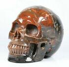 Huge+5.0%22+Petrified+Wood+Carved+Crystal+Skull%2C+Realistic%2C+Crystal+Healing