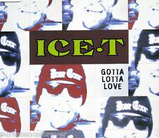 ICE T - Gotta Lotta Love (UK 4 Track CD Single Part 1)