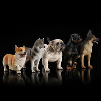 1/6 Scale Dogs Figure Bulldog Shepherd Lingbi Hus ky Rottweiler Doberman