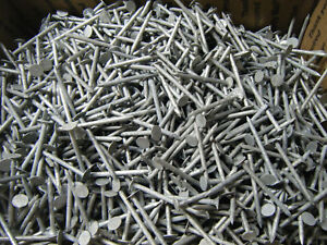 Lot of 7 Pound Heavy duty Galvanized Roofing Nails Pound 11 Gage 2 inches Long