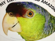 NEW! Lilac Crowned Amazon Parrot Exotic Bird Vinyl Decal Bumper Sticker