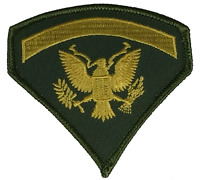 US ARMY SPECIALIST FIVE E-5 SPEC 5 RANK PATCH DIRTY BIRD