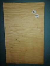 CONSECUTIVE SHEETS CURLY MAPLE VENEER 19 X 31 CM CM#1 MARQUETRY