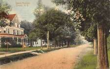 Liberty New York Dwyer Ave Street Scene Historic Bldgs Antique Postcard K43872