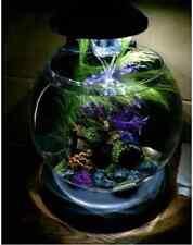 1.8 Gallon Filter Aquarium, Fish Tank, Fish Bowl With LED Lighting