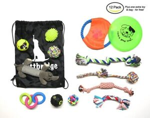 12 Pack Dog Toys Plush Chew Toys Squeaky Toys + FREE Frisbee & Carrying Bag