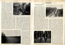 E.Graf Fabrice Kammerherr S.M.König Albert: Büchsen Schüsse und Wirkungen c.1928