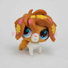 Littlest Pet Shop Rare Dog Collection Child Girl Boy Figure Toy Cute LPS020 NEW!