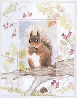 Red Squirrel Cross Stitch Kit Derwentwater Designs