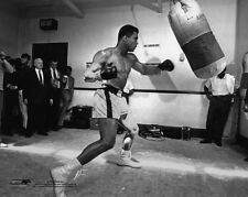 Cassius Clay MUHAMMAD ALI Glossy 8x10 Photo Boxer Print Training Boxing Poster