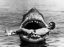 STEVEN SPIELBERG JAWS 1975 GREAT WHITE SHARK MOVIE 8X10 PHOTO PHOTOGRAPH