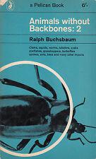 Animals Without Backbones 2 - Vintage Pelican PB 1964 Illustrated - Buchsbaum