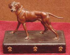 ancien magnifique grand chien bronze dit de vienne 19 eme très bon état general