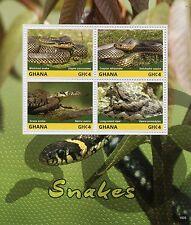 Ghana 2015 MNH Snakes 4v M/S I Reptiles Caspian Whipsnake Viper Grass Snake