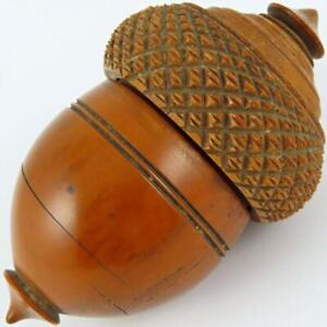 ANTIQUE ENGLISH GEORGIAN COQUILLA NUT HAND CARVED FIGURAL ACORN NUTMEG GRATER