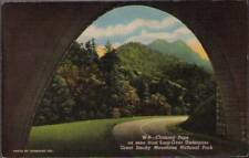 (tl5) Great Smoky Mountains National Park: Chimney Tops