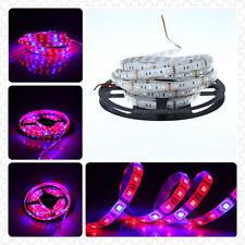 5M 5050 LED Strip Plant Grow Light 3:1 RED BLUE 4 Aquarium Greenhouse Hydroponic