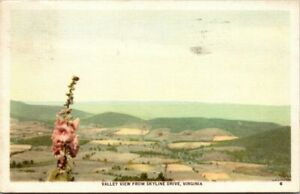 Postcard Valley View From Skyline Drive Virginia