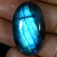 44.30Cts Natural Multi Fire Spectrolite Labradorite Oval Cabochon Loose Gemstone