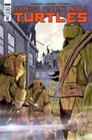 Teenage Mutant Ninja Turtles #108 1:10 Brett Brooks l RI Variant IDW Comics TMNT