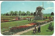 1967 Veldheer Tulip Farms Dutch Windmill Children Holland MI Michigan  Postcard