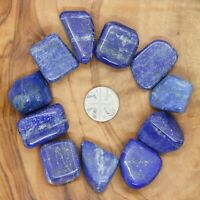 11 x Lapis Lazuli Tumblestones Crystals 125g+ Wholesale Therapists Healers Reiki