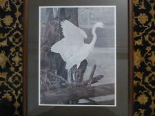 Richard Jarrell signed and matted print titled American Egret