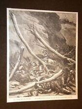 Bois-Brûlés o burnt wood o Brullis sub-tribe of North American Dakota Indians
