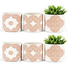 3pc Bricka Coral Cement 12x10.5cm Pot Planters W/hole & Plug Home Decor Assorted