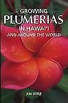 Growing Plumeria in Hawai'i by Jim Little (2006, Paperback)