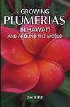 Growing Plumeria in Hawai'i by Jim Little (2006, Paperback)