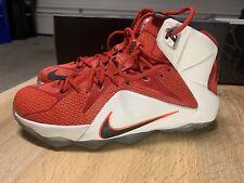 Nike LeBron 12 XII Heart Of A Lion VNDS Sz 11.5