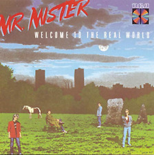 Welcome to the Real World - Mr Mister (CD) (1988)