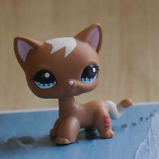 """IN HAND LPS LITTLEST PET SHOP MINI 3"""" FIGURE TOY Cookie Brown Cat kitty #1170"""