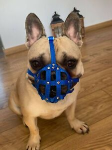 """Dog Muzzle for French Bulldog  """"Frenchies"""" a Other similar snouts short snout"""