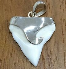 B1 27mm BULL SHARK TOOTH PHOTO IS THE PENDANT YOU WILL GET 925 SS FISHING DIVING