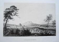 Schloß Johannisberg Mumm   Rhein seltener echter alter Aquatinta Stahlstich 1844