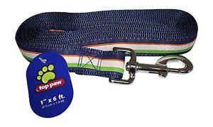 Top Paw Dog Pet Leash 1' x 6' ft 2.5cm x 1.8M Large Chain Clip Blue Green 21L