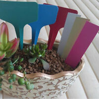 15-100 Garden Plant Pot Markers Plastic Stake Tags Yard Court Nursery Seed Label