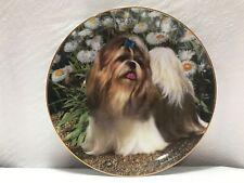 Danbury Mint *Picture Perfect* Shih Tzus Dog #A1243 Decorative Collective Plate