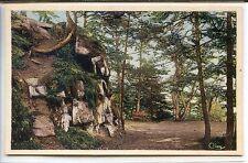 CP 88 Vosges - Bruyères - Les Roches de l'Avison
