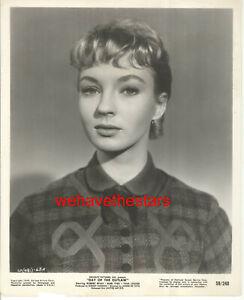 VINTAGE Venetia Stevenson GORGEOUS BEAUTY '59 Publicity Portrait