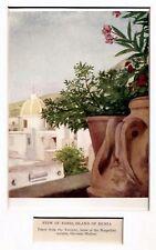 Ischia:Forio Vista dal Torrione.Golfo di Napoli.Stampa Antica.Passepartout.1904.