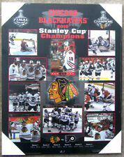 Chicago Blackhawks 2010 Stanley Cup Championship Picture Plaque