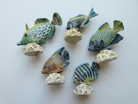 Tropical Fish Figurines - 5 Different - Composite on composite coral