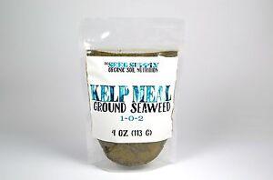4 Oz Maxicrop Kelp Meal - Organic Norwegian Seaweed Garden Fertilizer