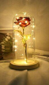 Dekor Rose im Glas LED Leuchten Rose Licht im Glaskuppel ewige Blumen Geschenk
