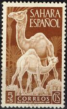 Spanish Sahara Desert Fauna Camels stamp 1956 MLH
