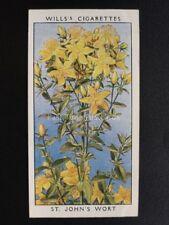 No.35 ST. JOHN'S WORT - Wild Flowers (Adhesive) - W.D.& H.O.Wills 1936
